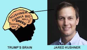 Trump's brain with Jared Kushner cartoon